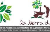 agrumi-biologica